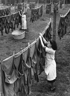 June Laundry workers hanging out army shirts to dry, from Aldershot Barracks, Surrey. The laundry workers wash 1500 army shirts a week. (Photo by Fred Morley/Fox Photos/Getty Images) Old Pictures, Old Photos, Smelly Towels, Fee Du Logis, Laundry Lines, Blouse Nylon, Washing Lines, Washing Machines, Army Shirts