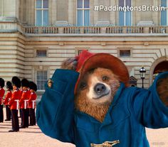 Paddington at Buckingham Palace in London, Greater London #paddingtonsbritain