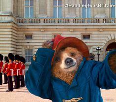 Paddington at Buckingham Palace in London, Greater London #paddingtonsbritain
