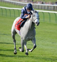 SKY LANTERN with R Hughes 1st in Sun Chariot Stakes at Newmarket 28-9-13. Copyright Martin Lynch.Trainer R.Hannon