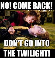 HAhahaa Cedric betrayed his Harry Potter roots and became a sparkly vampire.