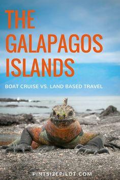 A Galapagos Islands Vacation - Choosing between a cruise or a land based, island-hopping itinerary.