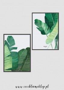 Zestaw plakatów botanicznych Palmowe pióropusze