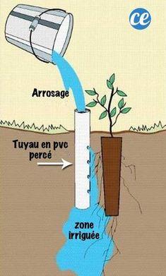 make # irrigation system Garden Yard Ideas, Garden Trees, Water Garden, Garden Projects, Vegetable Garden, Drip Irrigation, Irrigation Systems, Gardening For Beginners, Fruit Trees