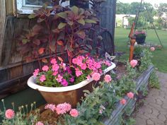 old bathtubs for planting flowers Garden Bathtub, Old Bathtub, Garden Junk, Home And Garden, Outdoor Projects, Outdoor Ideas, Vintage Sink, Outdoor Sinks, Clawfoot Tubs