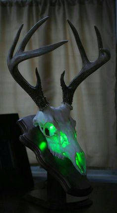 Details about Whitetail Deer Skull Mount Lamp Antler European Mount Taxidermy Deer Hunting Decor, Quail Hunting, Deer Decor, Hunting Stuff, Hunting Tips, Archery Hunting, Bow Hunting, Antler Decorations, Hunting Crafts