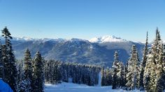Want to become a ski instructor? Take our 4 week course and secure your paid ski season job in Whistler teaching kids how to ski. Get started now on our best project in Canada. Ski Season, Gap Year, Whistler, Skiing, How To Become, Canada, Seasons, Mountains, Park