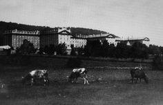 Montréal 1870. Le Grand Séminaire (Collège de Montréal), rue Sherbrooke. | par…