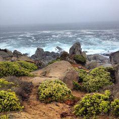 Punta de Tralca, V región, Chile