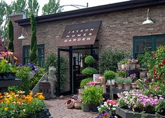 Jayson Home and Garden. Amazing furniture and unbelievable flowers