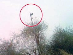 Pakistani Drone spying on the Pakistan/India border.