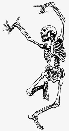 Skeleton of Man ~ Free Vintage Halloween Clip Art Illustration Skeleton Dance, Skeleton Tattoos, Skeleton Art, Skeleton Watches, Skeleton Drawings, Skeleton Makeup, Skeleton Flower, Marionette Tattoo, La Danse Macabre