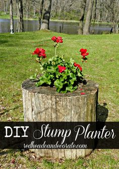 OUtdoor project-Curb appeal-DIY Stump Planter by redheadcandecorate.com