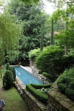 Lush backyard garden and pool