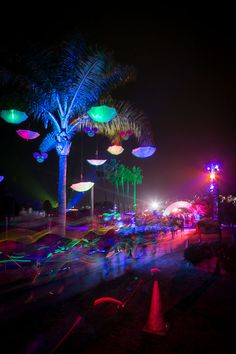 Electric Run Pictures & Photo Gallery | Electric Run™