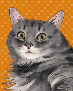 TITLE: Gray Long Haired Tabby Cat    IMAGE SIZE: 8x10 with small white border for framing.    MEDIUM: Printed on a Canon Pro 9000 using