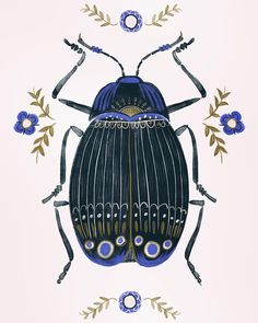 "164 Likes, 3 Comments - Ciara Ní Dhuinn (@ciarasworld) on Instagram: ""Beetle #bugs #beetle #illustration #wip #makeartthatsells #decor #homedecor #doodle #sketch…"""