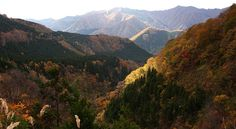 Shirakami Sanchi Travel Guide
