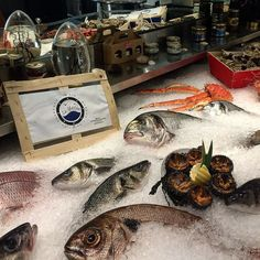 #PortHercule Served? Lunch at La Marée overlooking the port of Monaco! Amazing restaurant for seafood! Mariscos e peixes super frescos, espetaculo!! Ostras, ouriços e carangueijos de todos os tipos e tamanhos. #montecarlo #monaco #port #seafood by rodrigoqfrota from #Montecarlo #Monaco