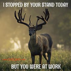 SHARE with a #hunter in your life! --posted via www.1CAMO.com #1camo #bigbuck #huntinghumor