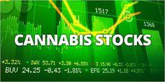 Marijuana Stock Market Invest In Marijuana.  (IPO) On Cannabis When It Hits The Market.  What Marijuana Stock To Invest In.
