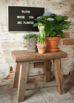 kruko van hout Bloom Where You Are Planted, Outdoor Furniture, Outdoor Decor, Hydrangea, Planter Pots, Instagram Posts, Cottage, Home Decor, Garden