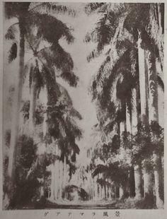 """Guatemalan Scenery"", Juvenile Encyclopedia, 1932 Vol. 14 World Geography 兒童百科大辭典 第十四巻 地理篇(三) 玉川學園出版部 昭和七年"