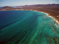 El arrecife coralino presente en la Bahía de Cabo Pulmo constituye una de las contadas áreas arrecifales en el Pacífico Este y la única en el Golfo de California o Mar de Cortés.
