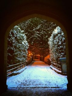 Snowy entrance to Warwick Castle.