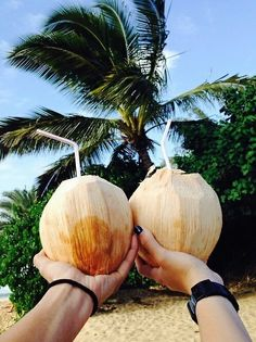 #Coconut gives you and jelly. #Allinone #cheers. www.islandbwoy.com