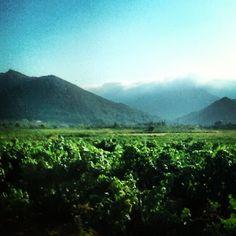 Spanish mountains #Spain #mountains #vinyards