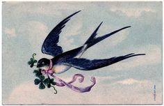 Lovely, lovely Swallow with Pink Ribbon Garland - French - The Graphics Fairy