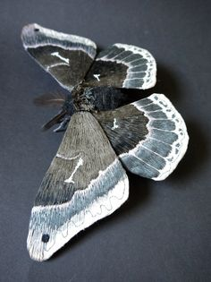 Fabric sculpture Callosamia promethea Saturniidae by irohandbags