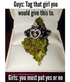 Will you marry me baby? My Love and my best BUD!  @HerQueen15