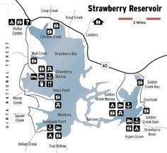 strawberry reservoir fishing