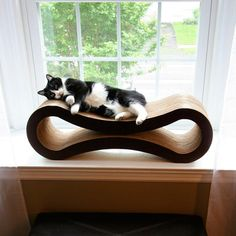 Obsessed with this cat scratcher lounge.