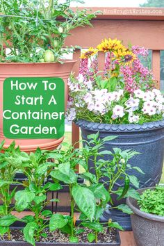 Ever wanted to start your own garden, but didn't know where to begin? This guide is for you! Beginners Guide: How To Start a Container Garden http://www.mrswrightwrites.com/how-to-start-a-container-garden/