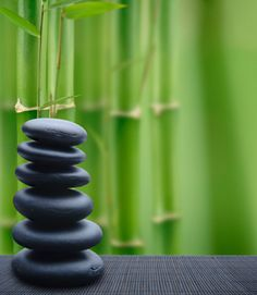 Feng Shui Quick Tips for Everyone. Browse hundreds of free women's articles and more at LifeScript.com.