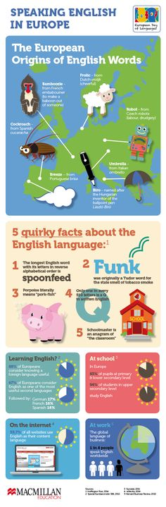 Infographic on the origins of words and quirky language facts to celebrate European Day of Languages!