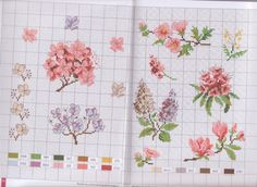 Gallery.ru / Фото #1 - mango flores - geminiana
