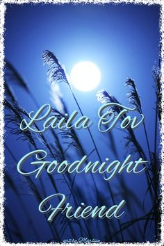 Moon & Stars Laila Tov