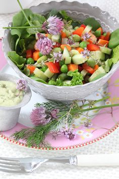 Colourful Veggie Chop Salad with Raw Ranch Dressing (Free of Dairy, Eggs, Oil & Vinegar)
