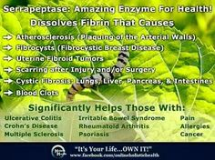 Serrapeptase is a powerful enzyme that literally finds and eats the fibrin that causes inflammation in the body!!!! Both Plexus Probio5 and Ease have this headline worthy enzyme which helps to bring healing in your body!!! http://theplexussolution.com