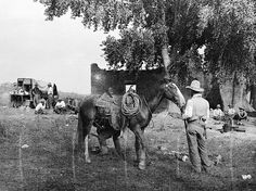 A couple of OR cowpunchers shoeing a horse in line camp on the border between Arizona and Old Mexico. The Greene Cattle Company, with headquarters in Hereford, Arizona, had a spread in both Old Mexico and Arizona. OR Ranch, Arizona., 1909