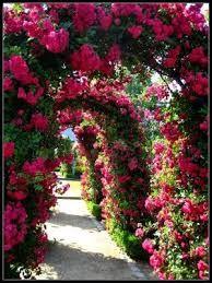 Znalezione obrazy dla zapytania elizabeth i jej ogród