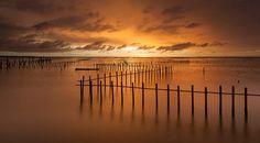 Golden Chigu Sunset