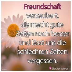 Freundschaft verzaubert, sie macht gute Zeiten noch besser und lässt uns die schlechten Zeiten vergessen. #sprüche #freundschaft #zeit