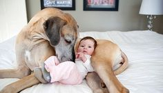 These Adorable Kids Snuggled Cozily In The Warm Embrace Of Giant Dogs Will Make You Smile