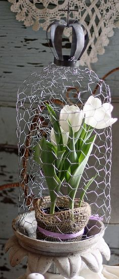 chicken wire garden cloche - so pretty! would love to have one of these little guys around my basil. Garden Crafts, Garden Art, Garden Design, Garden Pond, Shade Garden, Small Backyard Gardens, Modern Backyard, Garden Modern, Deco Floral
