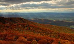 Shenandoah: Shafts   Flickr - Photo Sharing! Shenandoah National Park, Virginia, National Parks, Photo And Video, Pictures, Travel, Photos, Viajes, Destinations